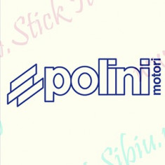 Polini Motori_Tuning Moto_Cod: MST-040_Dim: 15 cm. x 4.6 cm.