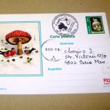 Maxima plante - ciuperci - Romania - 2+1 gratis - RBK14362