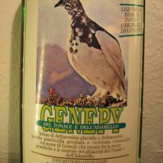 Genepy, morandini, italy, cl 75 gr 44 anii 60 - Lichior