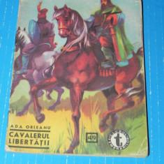 Cavalerul dreptatii - Ada Orleanu - clubul temerarilor nr 49 (06062 - Carte de aventura
