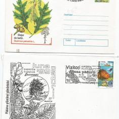 (No2) plic omagial- EXPOZITIA FILATELICA LUNA PADURII 99- lot 2 plicuri, An: 1999