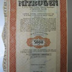 1944 Nitrogen Bucuresti 5000 lei Actiune veche actiuni vechi document