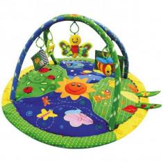 Centru De Joaca Cu Sunete Si Fluture - Jucarie zornaitoare