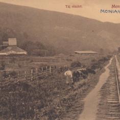 MONEASA -BAI (ARAD), VEDERE CU CALEA FERATA - Carte Postala Crisana dupa 1918, Necirculata, Printata