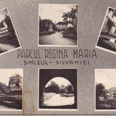 SIMLEUL SILVANIEI, PARCUL REGINA MARIA - Carte Postala Crisana dupa 1918, Necirculata, Fotografie
