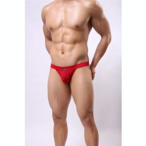 Tanga barbati - material semitransparent cu model fin pe el - div culori, marimi