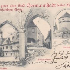 SIBIU, PRIMARIA, MARIENTURM, CLASICA, CIRCULATA MART. 1901 - Carte Postala Transilvania pana la 1904, Printata
