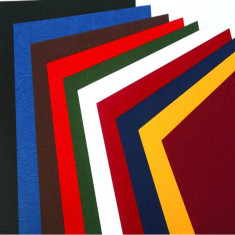 ANTELOPE Premium carton coperti imitatie piele A4, set 100 coli - Mapa Papetarie