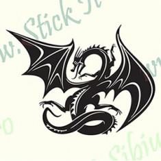 Dragon Tribal-Model 3_Tuning Auto_Cod: TRI-018_Dim: 30 cm. x 22.2 cm. - Stickere tuning