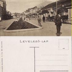 Targu Mures-rara - Carte Postala Transilvania 1904-1918, Necirculata, Printata
