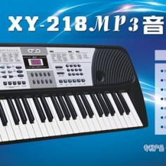 Orga muzicala electronica 54 clape alimentare priza sau baterie - Instrumente muzicale copii