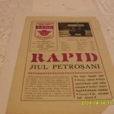 Program         Rapid  - Jiul  Petrosani