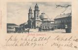 SATU MARE , SALUTARI DIN SATU MARE , CLASICA , CIRCULATA MAI 1900, Printata