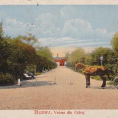 BUZAU, VEDERE DIN CRANG, CIRCULATA 1918, POSTA GERMANA - Carte Postala Muntenia dupa 1918, Printata