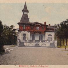 BUZAU, BUFETUL CRANGULUI - Carte Postala Muntenia dupa 1918, Necirculata, Printata