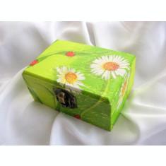 cutie bijuterii 14858