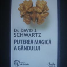 DAVID J. SCHWARTZ - PUTEREA MAGICA A GANDULUI - Carte Psihologie, Curtea Veche