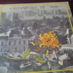 DISC VINIL CRIZANTEMA DE AUR - Muzica Corala