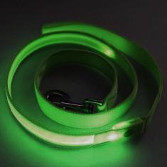 Lesa LED verde - Zgarda, lesa si ham