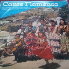 DISC VINIL CANTE FLAMENCO FONTANA - Muzica Latino
