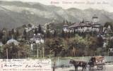 SINAIA , VEDEREA MUNTILOR BUCEGI DIN PARC , CLASICA , CIRCULATA AUG.1900