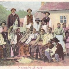 SALUTARI DIN ROMANIA O SEZATOARE LA TARA COSTUME POPULARE CLASICA CIRC. 1905 - Carte postala tematica, Circulata, Printata