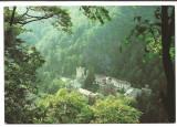 @carte postala(ilustrata)-GORJ-Manastirea Tismana, Necirculata, Printata
