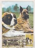 Bnk cld Calendar de buzunar - 1989 - caini