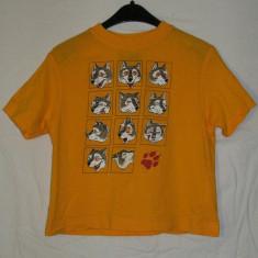 Tricou copii JACK WOLFSKIN - nr 104, Marime: One size, Culoare: Din imagine, Unisex