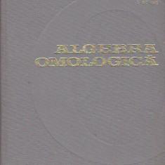 I. BUCUR - ALGEBRA OMOLOGICA