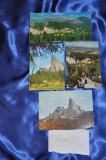 Lot 4 CP Muntii RARAU. (Carti postale vechi,Vederi Romania)