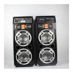 Set 2 boxe active cu USB si slot SD pentru Karaoke Temeisheng DP-2304