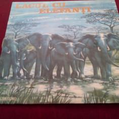 DISC VINIL LACUL CU ELEFANTI - Muzica pentru copii