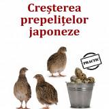IDEI de AFACERI - CREŞTEREA PREPELIŢELOR JAPONEZE