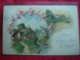 Ilustrata -Litografie -Satuc cu Flori circ.1899 ,5 bani Spic Grau ,goarna 35