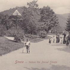 SINAIA, VEDERE DIN PARCUL SINAIA - Carte Postala Muntenia 1904-1918, Necirculata, Printata