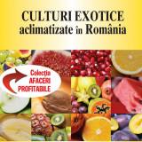 IDEI de AFACERI - CULTURI EXOTICE ACLIMATIZATE IN ROMANIA