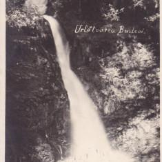 URLATOAREA, BUSTENI, CIRCULATA 1928 - Carte postala tematica, Printata