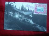 Maxima 100 Ani Paltinis - Hohe Rinne 1994