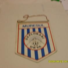 Fanion Muresul E. Deva - Fanion fotbal