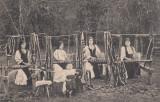 TESATOARE DE BRANE (BRAU) IN GALES I. SALISTE  EDITURA NICOLAE N. TINTEA SALISTE, Necirculata, Printata