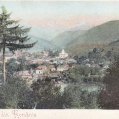 SALUTARI DIN ROMANIA, RUCAR, CLASICA - Carte Postala Muntenia pana la 1904, Necirculata, Printata