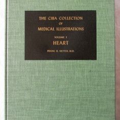 THE CIBA COLLECTION OF MEDICAL ILLUSTRATIONS, Vol.5 - HEART, F. H. Netter, 1978 - Carte Cardiologie