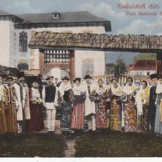 SALUTARI DIN ROMANIA, PORT NATIONAL DIN RUCAR - Carte Postala Muntenia 1904-1918, Necirculata, Printata