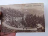 Carte postala cu imagini din valea Viseului,Maramures.Necirculata., Fotografie, Viseu de Sus