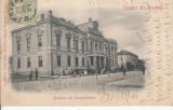 TURNU SEVERIN  PRIMARIA , SALUTARI DIN ROMANIA,  TCV , CLASICA ,CIRC. IAN. ''903, Circulata, Printata, Drobeta-Turnu Severin