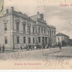 TURNU SEVERIN PRIMARIA, SALUTARI DIN ROMANIA, TCV, CLASICA, CIRC. IAN. ''903 - Carte Postala Oltenia pana la 1904, Circulata, Printata, Drobeta-Turnu Severin