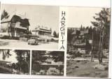 CPI (B6853) CARTE POSTALA - HARGHITA, MOZAIC, Circulata, Fotografie