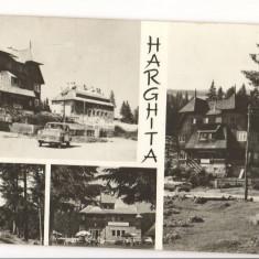 CPI (B6853) CARTE POSTALA - HARGHITA, MOZAIC - Carte Postala Transilvania dupa 1918, Circulata, Fotografie