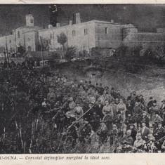 TARGU OCNA, CONVOIUL DETINUTILOR MERGAND LA TAIAT SARE - Carte Postala Moldova pana la 1904, Necirculata, Printata